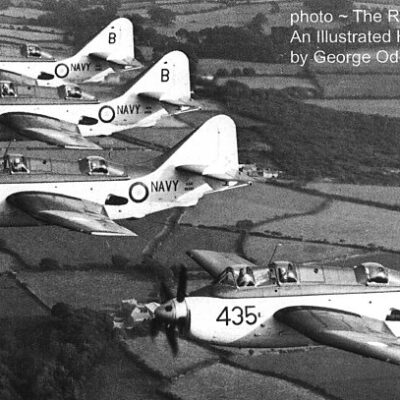 A formation of two 817 Squadron Gannets
